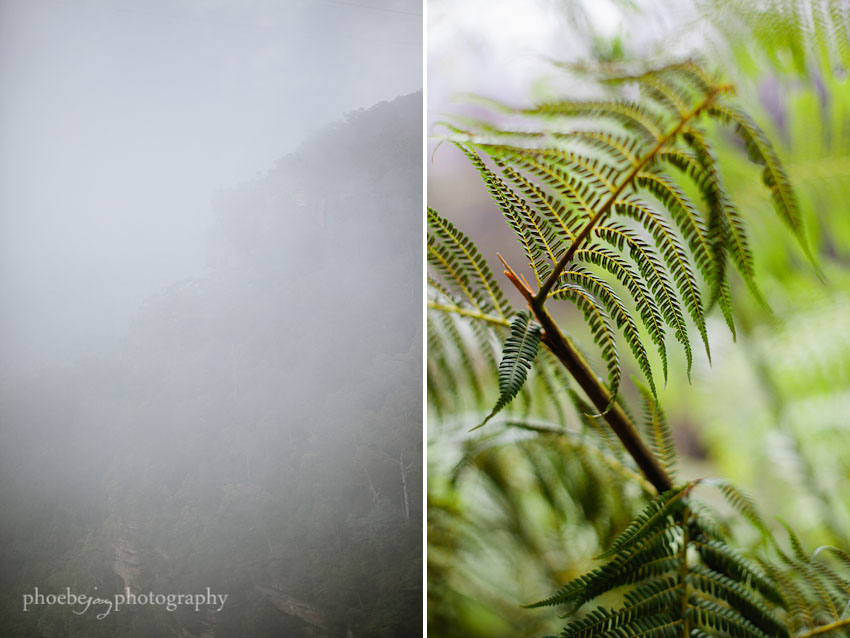 Australia - Blue Mountains - Katoomba- 3.jpg