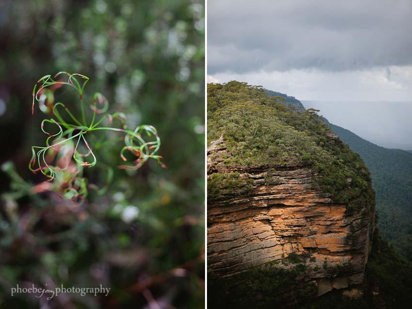 Australia - Blue Mountains - Katoomba- 8.jpg