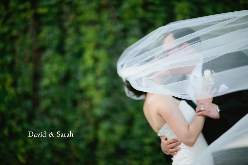 David and Sarah-1.jpg