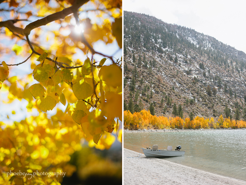 Eastern Sierra - fall foliage-2 - June Lake.JPG