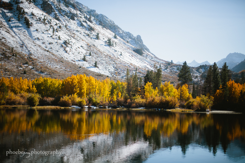 Eastern Sierra - fall foliage-3 - Bishop.JPG