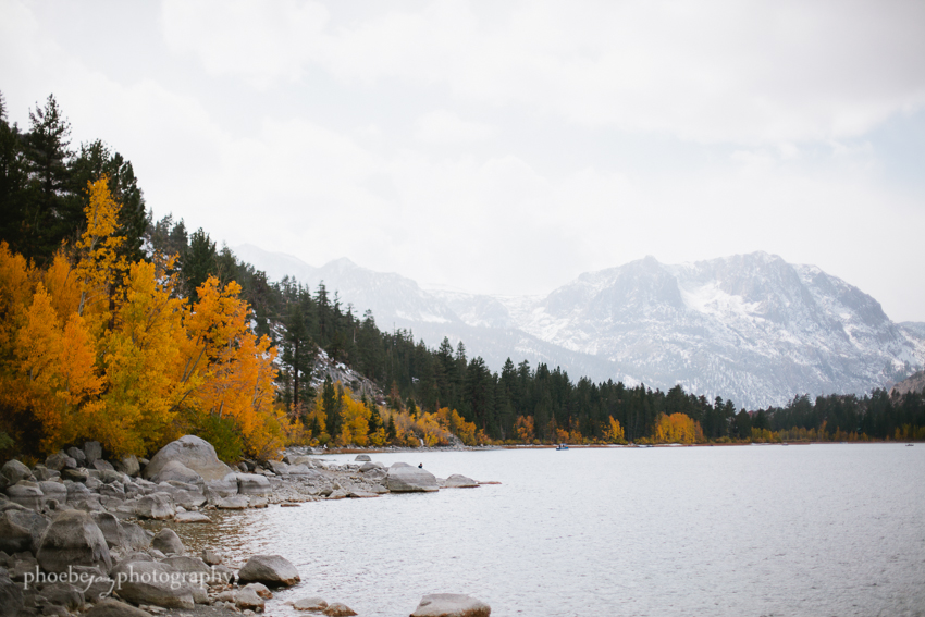 Eastern Sierra - fall foliage-6 - June Lake.JPG