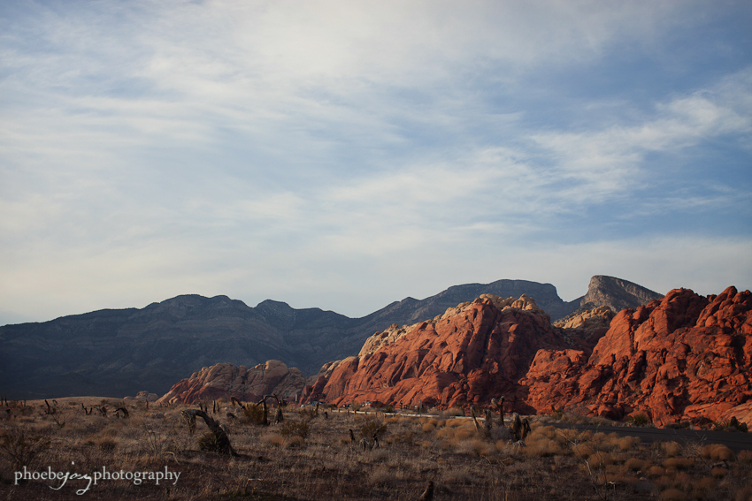 Las Vegas - WPPI-Red Rock -5.jpg
