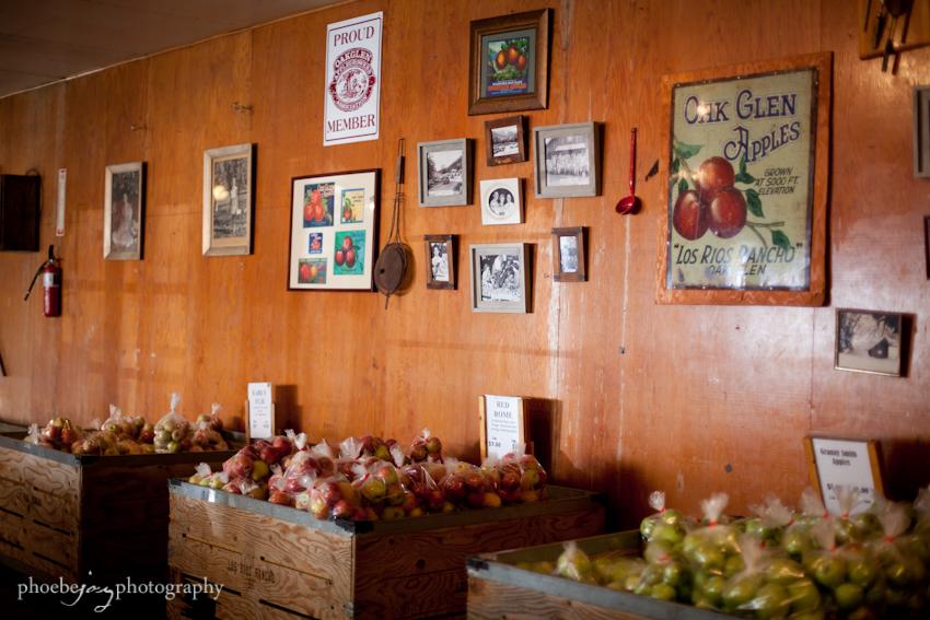Oak Glen- Apple Butter Festival-1.jpg