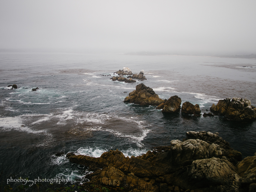 Phoebe Joy Photography - Big Sur-32.jpg