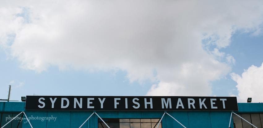 Phoebe Joy Photography - Sydney - Australia - 6 - Fish market.jpg