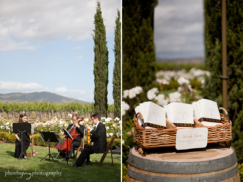 Temecula - Ponte Winery - Amy & Danny-17.jpg