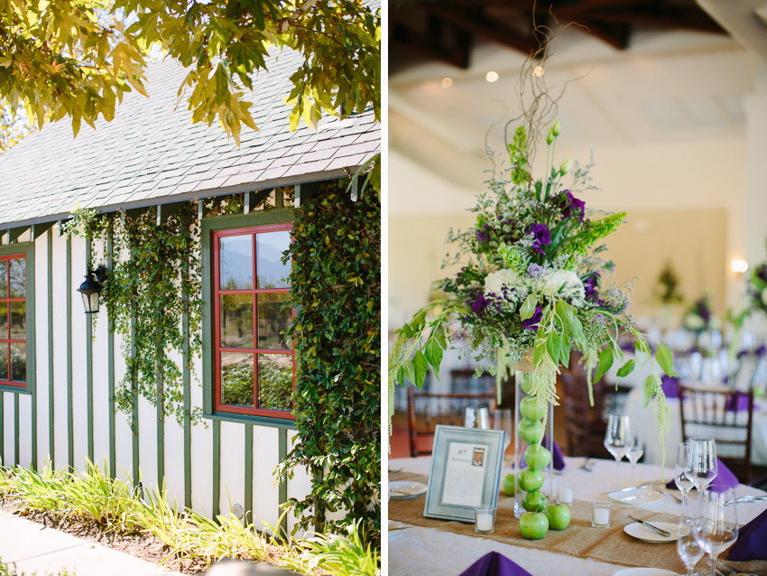 Temecula - Ponte Winery wedding-17.JPG