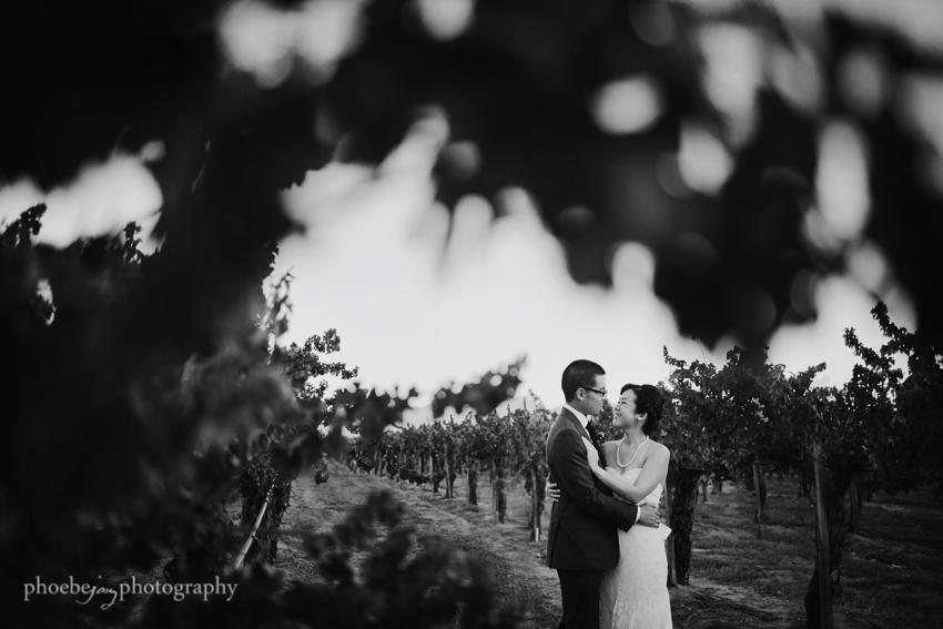 Temecula - Ponte Winery wedding-24.JPG