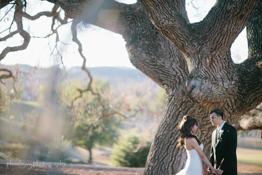 Terrence and Desiree - Ruby Hill - Pleasanton -13.jpg
