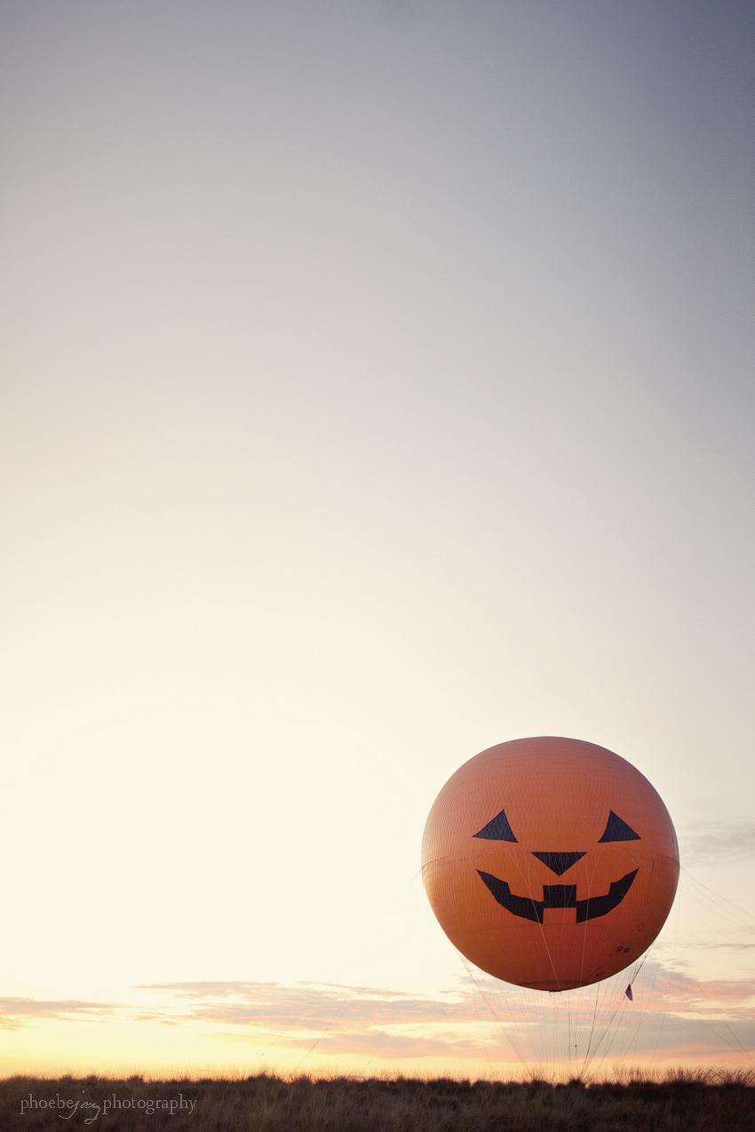 The great pumpkin - Orange County Great Park-5.jpg